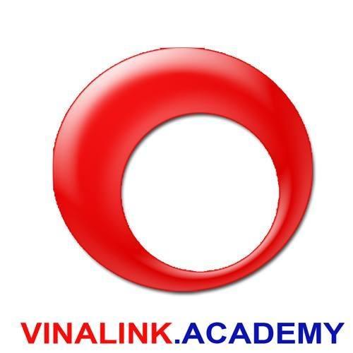 Logo Vinalink vector